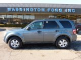 2010 Steel Blue Metallic Ford Escape XLT 4WD #45230133