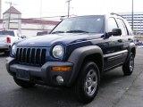 2002 Patriot Blue Pearlcoat Jeep Liberty Sport 4x4 #45267018