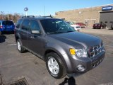 2011 Sterling Grey Metallic Ford Escape XLT V6 4WD #45331243