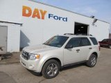 2009 Light Sage Metallic Ford Escape XLT V6 4WD #45449373