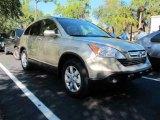 2008 Borrego Beige Metallic Honda CR-V EX-L #45496337