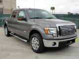 2011 Sterling Grey Metallic Ford F150 XLT SuperCrew #45449673