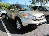 2008 Borrego Beige Metallic Honda CR-V EX-L #45559779
