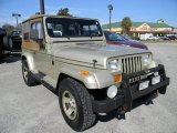 Jeep Wrangler 1992 Data, Info and Specs