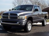 2002 Dodge Ram 1500 Graphite Metallic
