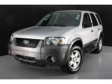 2006 Silver Metallic Ford Escape XLT V6 #45688397