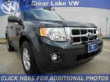 2009 Black Pearl Slate Metallic Ford Escape XLT #45499064