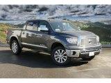 2011 Magnetic Gray Metallic Toyota Tundra Platinum CrewMax 4x4 #45559763