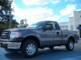 2011 Sterling Grey Metallic Ford F150 XL Regular Cab #45725902