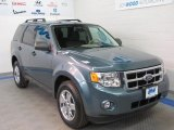2010 Steel Blue Metallic Ford Escape XLT 4WD #45726623