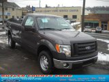 2011 Sterling Grey Metallic Ford F150 XL Regular Cab 4x4 #45770314