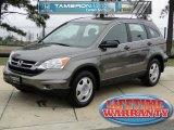 2010 Urban Titanium Metallic Honda CR-V LX #45770874