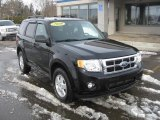 2009 Black Ford Escape XLT V6 4WD #45876696