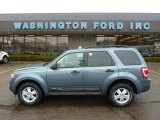 2010 Steel Blue Metallic Ford Escape XLT 4WD #45876734