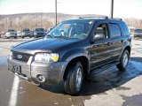 2006 Black Ford Escape XLT V6 4WD #4557536
