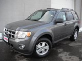 2011 Sterling Grey Metallic Ford Escape XLT #46031664