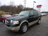 2010 Tuxedo Black Ford Expedition Eddie Bauer 4x4 #46038338