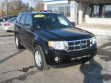 2009 Black Ford Escape XLT #46070165