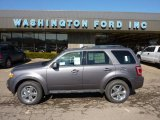 2011 Sterling Grey Metallic Ford Escape Limited V6 4WD #46070176