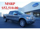 2011 Sterling Grey Metallic Ford F150 Platinum SuperCrew 4x4 #46069949