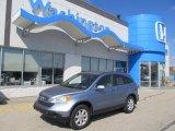 2008 Glacier Blue Metallic Honda CR-V EX-L #46091560
