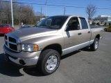 2004 Light Almond Pearl Dodge Ram 1500 SLT Quad Cab 4x4 #46091983