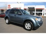 2010 Steel Blue Metallic Ford Escape XLT V6 4WD #46183108