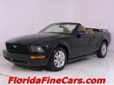 2006 Black Ford Mustang V6 Premium Convertible #441153