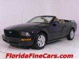 2006 Black Ford Mustang V6 Premium Convertible #441153