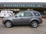 2011 Sterling Grey Metallic Ford Escape Limited V6 4WD #46244287