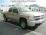 2009 Silver Birch Metallic Chevrolet Silverado 1500 LS Crew Cab #46318300