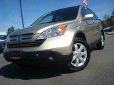 2009 Borrego Beige Metallic Honda CR-V EX-L 4WD #46318069
