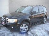2009 Black Ford Escape XLT V6 4WD #46344548
