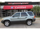 2006 Titanium Green Metallic Ford Escape XLT V6 4WD #46344624