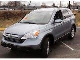 2008 Glacier Blue Metallic Honda CR-V EX-L 4WD #46396994