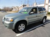 2006 Titanium Green Metallic Ford Escape Limited 4WD #46397607
