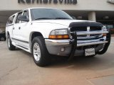 2003 Bright White Dodge Dakota SLT Quad Cab #46455973