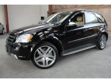 2009 Mercedes-Benz ML Black