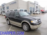 2010 Tuxedo Black Ford Expedition Eddie Bauer 4x4 #46545410
