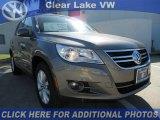 2011 Alpine Gray Metallic Volkswagen Tiguan SE #46546434