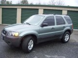 2006 Titanium Green Metallic Ford Escape XLT V6 4WD #46612002