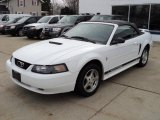 2002 Oxford White Ford Mustang V6 Convertible #46698030