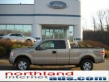 2011 Pale Adobe Metallic Ford F150 XLT SuperCab 4x4 #46776051