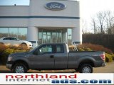 2011 Sterling Grey Metallic Ford F150 XL SuperCab 4x4 #46776052