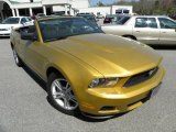 2010 Ford Mustang V6 Convertible Data, Info and Specs