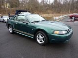2002 Tropic Green Metallic Ford Mustang V6 Coupe #46776480