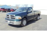2011 Hunter Green Pearl Dodge Ram 1500 SLT Regular Cab 4x4 #46777454