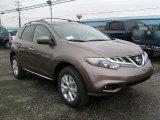 2011 Nissan Murano Tinted Bronze