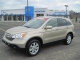 2008 Borrego Beige Metallic Honda CR-V EX-L #46869853