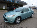 2012 Ford Focus Frosted Glass Metallic